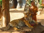 04 Tempio delle Tigri - Kanchanabury