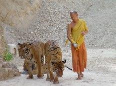 06 Tempio delle Tigri - Kanchanabury
