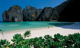 Thai - Krabi