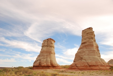 Arizona - Elefant Feet
