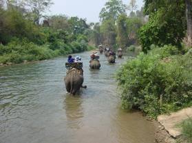 Maeping elefant camp - Thailandia