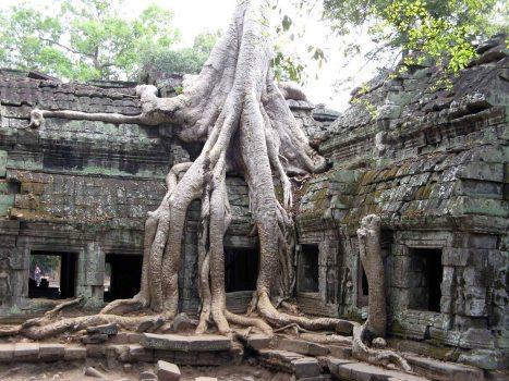 Angkor Wat - TaPhrom Temple