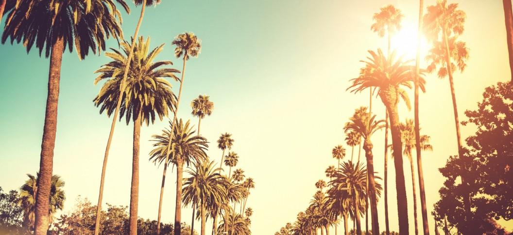 Los Angeles - CA