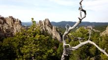 Black Hills - SD