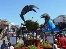 fishermans wharf - San Francisco