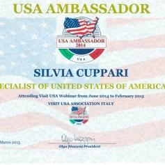 Usa Ambassador 2