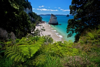 Cathedral Cove - Nuova Zelanda