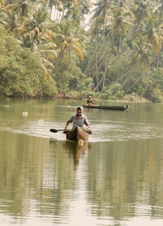 Backwaters - Kerala