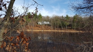 Concord - Walden Pond