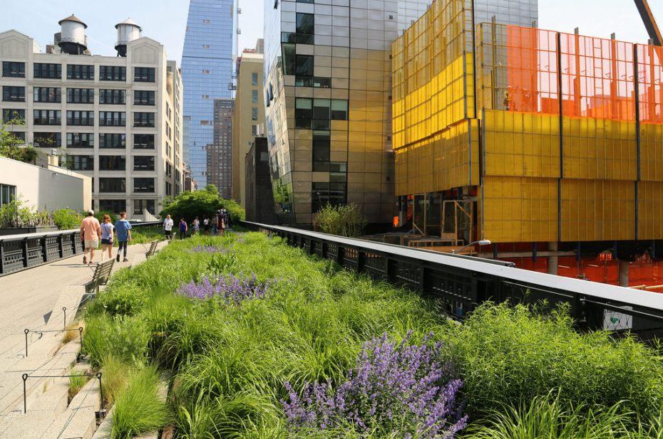 New York - High Line - Photo credit: UGArdener
