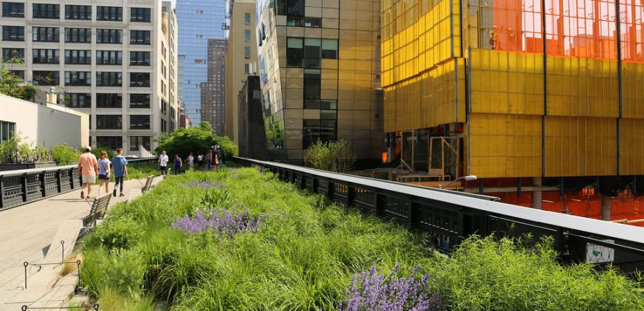 New York - High Line - Photo credit: UGArdener