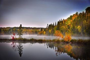 Quebec - Foliage