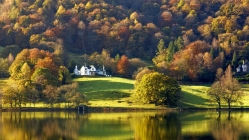 Lake District - Foliage