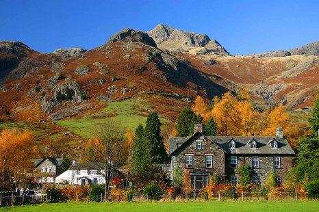 Lake District - Foliage