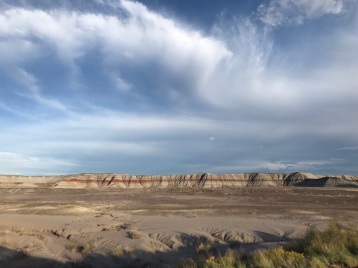 Petrified Forest NP - painted desert