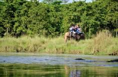 Parco Nazionale Chitwan - Jungle Safari