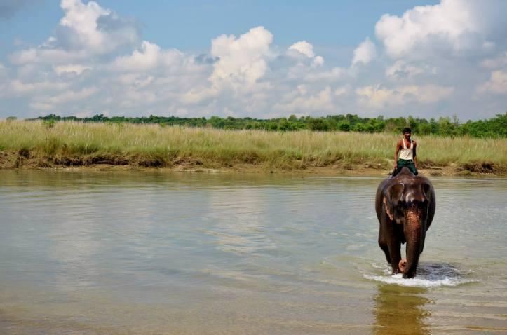 Parco Nazionale Chitwan