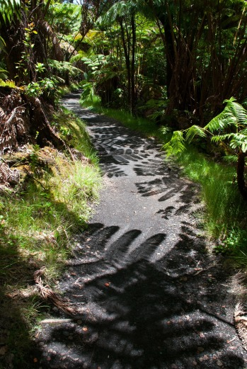 trail lungo il Volcanoes NP - Hawaii