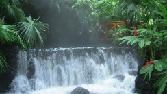 Waterfall Arenal