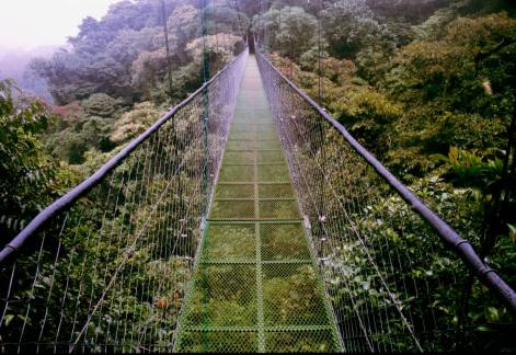 Sky Walk bridge