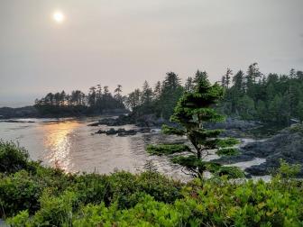 Vancouver Island - Tofino