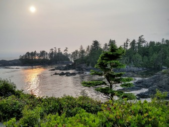 vancouver-island-Uclulet