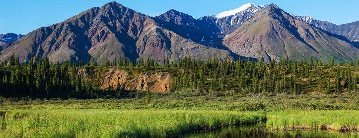 Paxson - Alaska