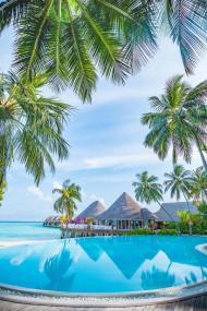 Vilu Reef - Maldive