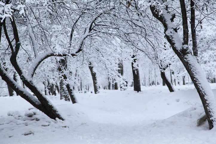Inverno Russo.jpg